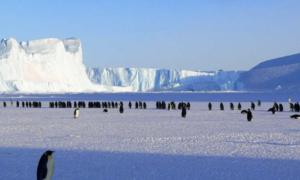 antarctica new status